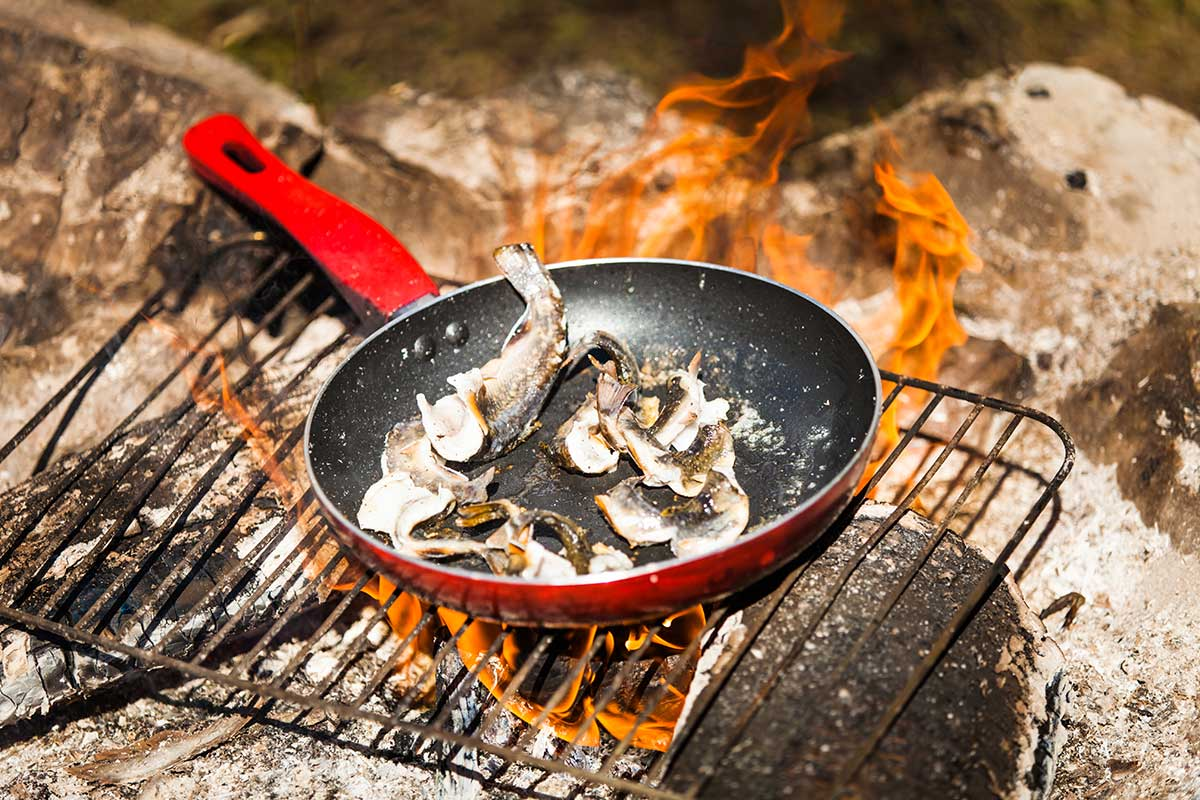 Trouts being cooked on campfire in Alaska